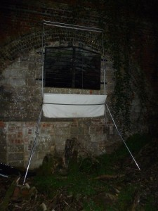 Harp trap on tent poles Photo (c) Bob Cornes