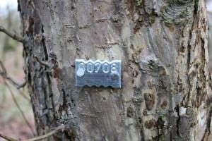 Tree marker. Photo Bob Cornes