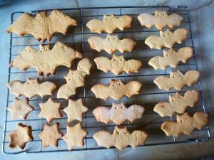 bat biscuits. Photo by Geraldine Hogg