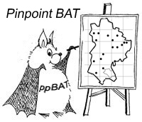 pinpoint-bat-copy