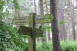 crop Robin signpost.jpg